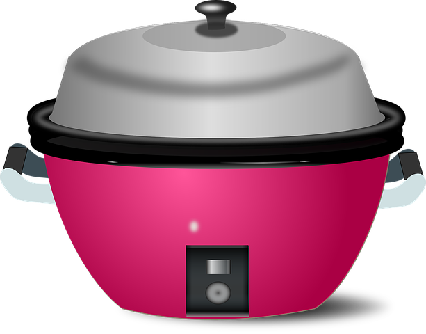 cuiseur de riz