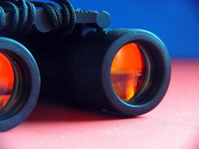 Vous partez en excursion en milieu sauvage, n'oubliez pas vos jumelles infrarouges !